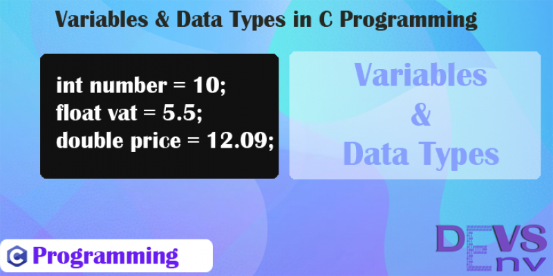 #2 Variable and Data Types in C Programming